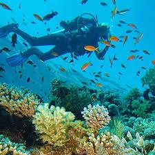 Scuba Curacao